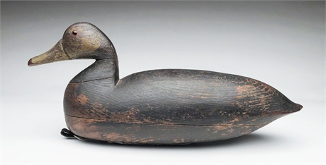 Hollow carved black duck, Lloyd Parker, Parkertown, New Jersey