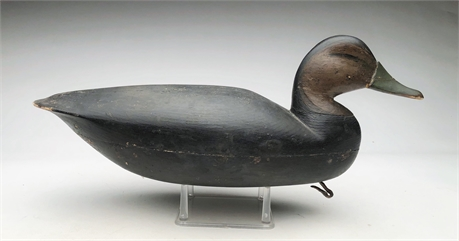 Hollow carved black duck, Henry Grant, Barnegat, New Jersey.