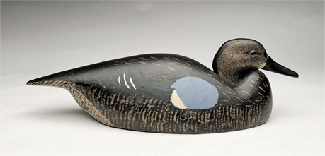 Blue wing teal hen, Billy Ellis, Whitby, Ontario, 2n quarter 20th century.