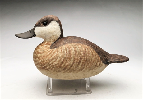 Hollow carved ruddy duck, Delbert 'Cigar' Daisey, Chincoteague, Virginia.