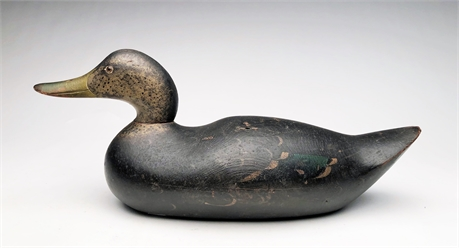 Black duck, Mason Decoy Factory, Detroit, Michigan.